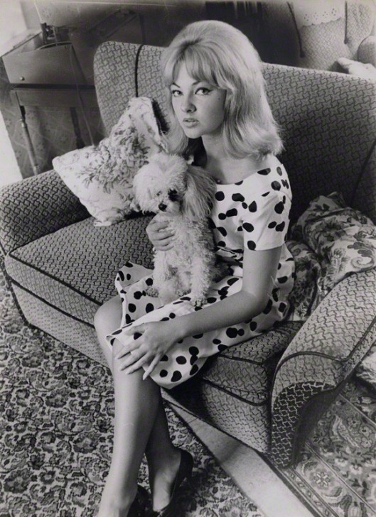 NPG x137326; Mandy Rice-Davies with her poodle by Keystone Press Agency Ltd